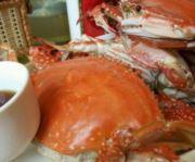 一盘梭子蟹