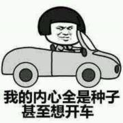 没事就开车