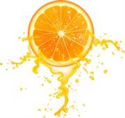 一只小橙子