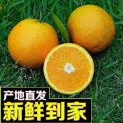 纯天然有机水果