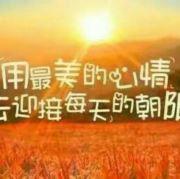 凤鸣朝阳自然萌