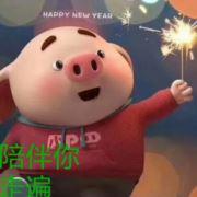 猪00592