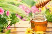 爱蜂蜜的小蜜蜂
